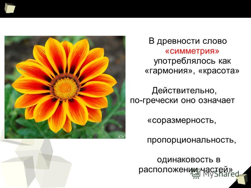 2 В древности слово «симметрия» употреблялось как «гармония», «красота» Действительно, по-гречески оно означает «соразмерность, пропорциональность, одинаковость в расположении частей»