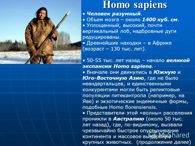 Homo neanderthalensis Неандерталец. Первая находка – в долине р.Неандер (Германия). Не является предком современного человека. Жили 200-28 тыс. лет назад. Ледниковая эпоха, холодный климат. Жили в пещерах, где постоянно поддерживали огонь, одевались