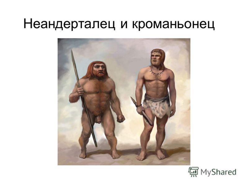 Неандерталец и кроманьонец