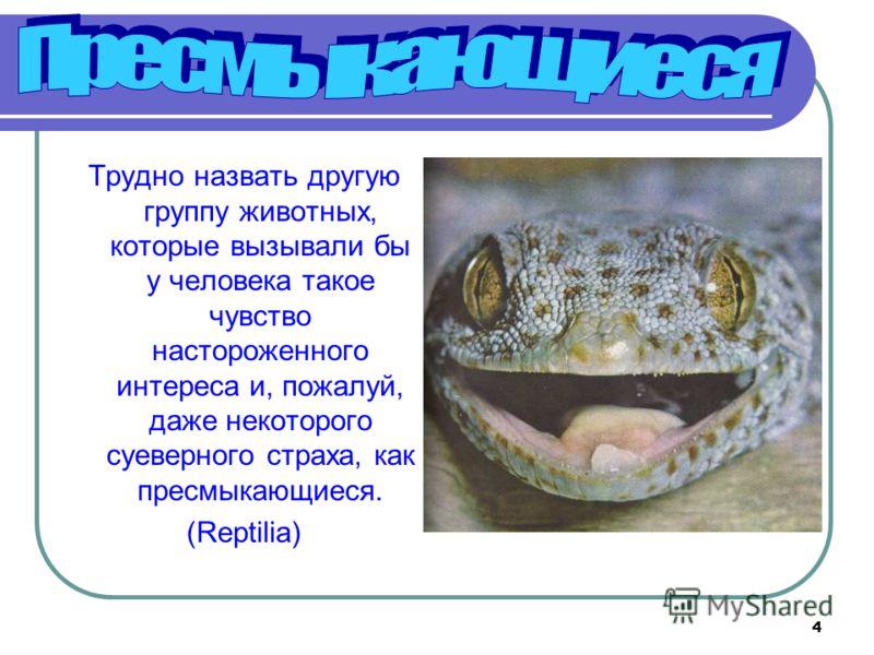 4 Трудно назвать другую группу животных, которые вызывали бы у человека такое чувство настороженного интереса и, пожалуй, даже некоторого суеверного страха, как пресмыкающиеся. (Reptilia)