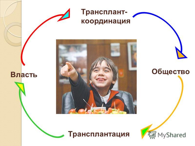 Общество Трансплант- координация Трансплантация Власть