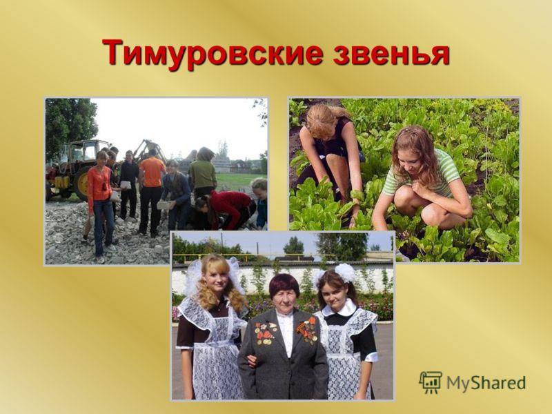 Тимуровские звенья