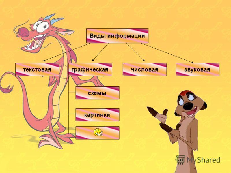 Виды информации числоваятекстоваяграфическаязвуковаятекстовая Виды информации числоваязвуковаяграфическая схемы