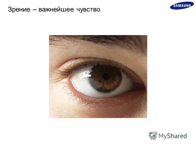 Зрение – важнейшее чувство