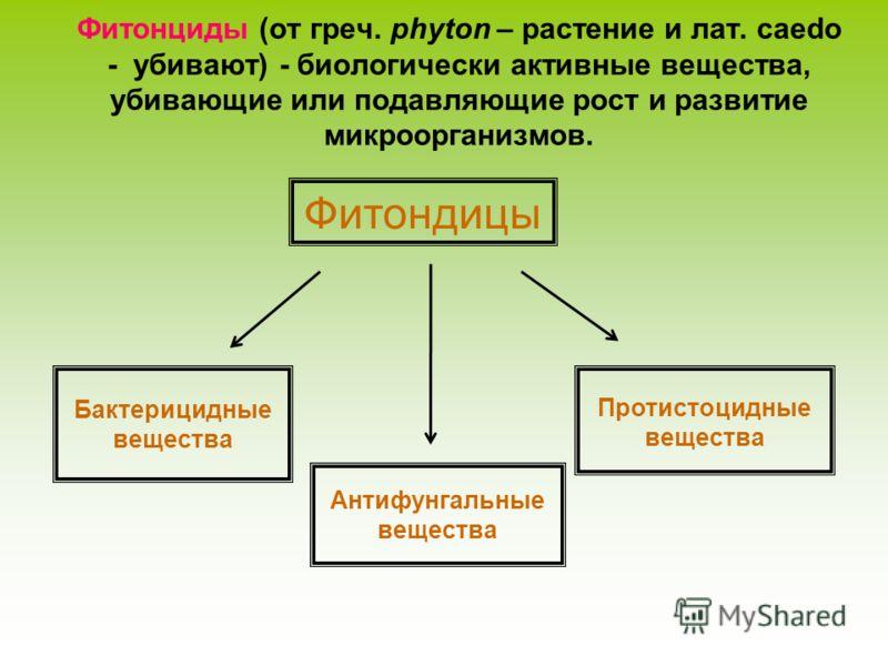 Фитонциды (от греч. phyton – растение и лат. caedo - убивают) - биологически активные вещества, убивающие или подавляющие рост и развитие микроорганизмов. Фитондицы Бактерицидные вещества Антифунгальные вещества Протистоцидные вещества