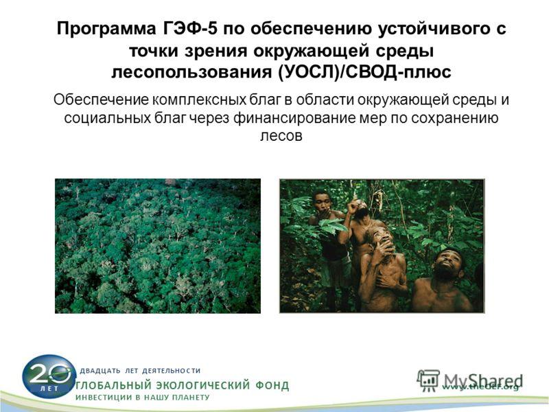 Программа ГЭФ-5 по обеспечению устойчивого с точки зрения окружающей среды лесопользования (УОСЛ)/СВОД-плюс Обеспечение комплексных благ в области окружающей среды и социальных благ через финансирование мер по сохранению лесов Л Е Т ДВАДЦАТЬ ЛЕТ ДЕЯТ