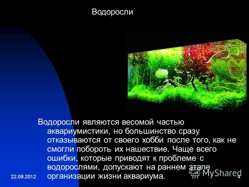 22.09.20124 Водоросли являются весомой частью аквариумистики, но большинство сразу отказываются от своего хобби после того, как не смогли побороть их нашествие. Чаще всего ошибки, которые приводят к проблеме с водорослями, допускают на раннем этапе о