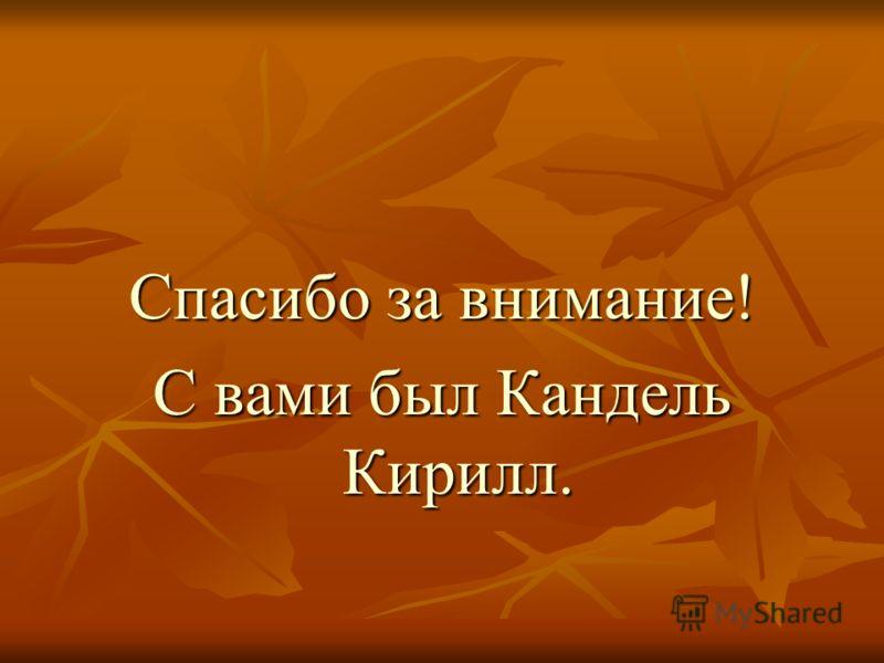 Спасибо за внимание! С вами был Кандель Кирилл.