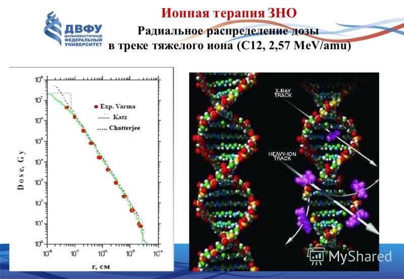 Ионная терапия ЗНО Радиальное распределение дозы в треке тяжелого иона (C12, 2,57 MeV/amu)