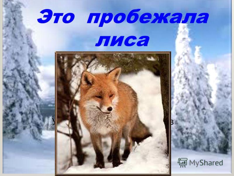 Это пробежала лиса Учитель начальных классов Наталья Ковалькова
