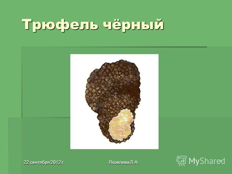 22 сентября 2012 г.22 сентября 2012 г.22 сентября 2012 г.22 сентября 2012 г.Яковлева Л.А.7 Трюфель чёрный