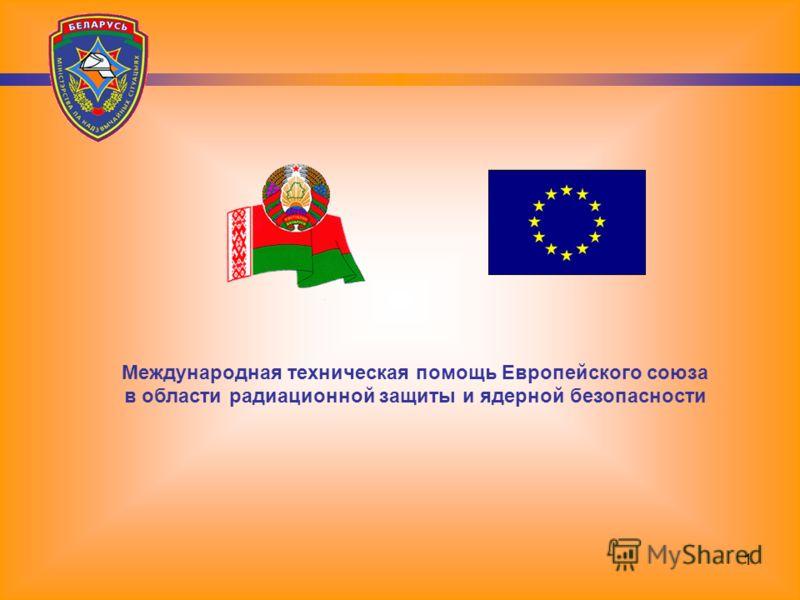 1 Международная техническая помощь Европейского союза в области радиационной защиты и ядерной безопасности
