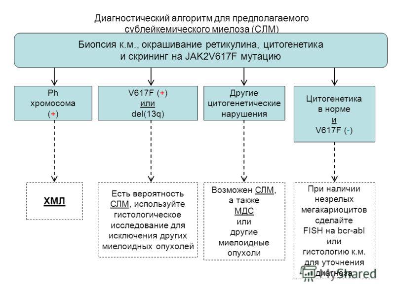 50 Диагностический алгоритм для предполагаемого сублейкемического миелоза (СЛМ) Другие цитогенетические нарушения Ph хромосома (+) V617F (+) или del(13q) Цитогенетика в норме и V617F (-) Биопсия к.м., окрашивание ретикулина, цитогенетика и скрининг н