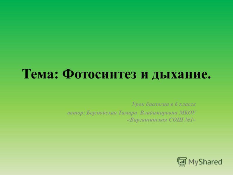 Тема: Фотосинтез и дыхание. Урок биологии в 6 классе автор: Берлюбская Тамара Владимировна МКОУ «Варгашинская СОШ 1»
