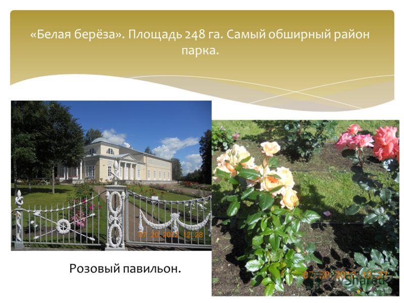 «Белая берёза». Площадь 248 га. Самый обширный район парка. Розовый павильон.