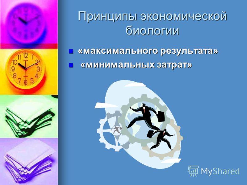 Принципы экономической биологии «максимального результата» «максимального результата» «минимальных затрат» «минимальных затрат»