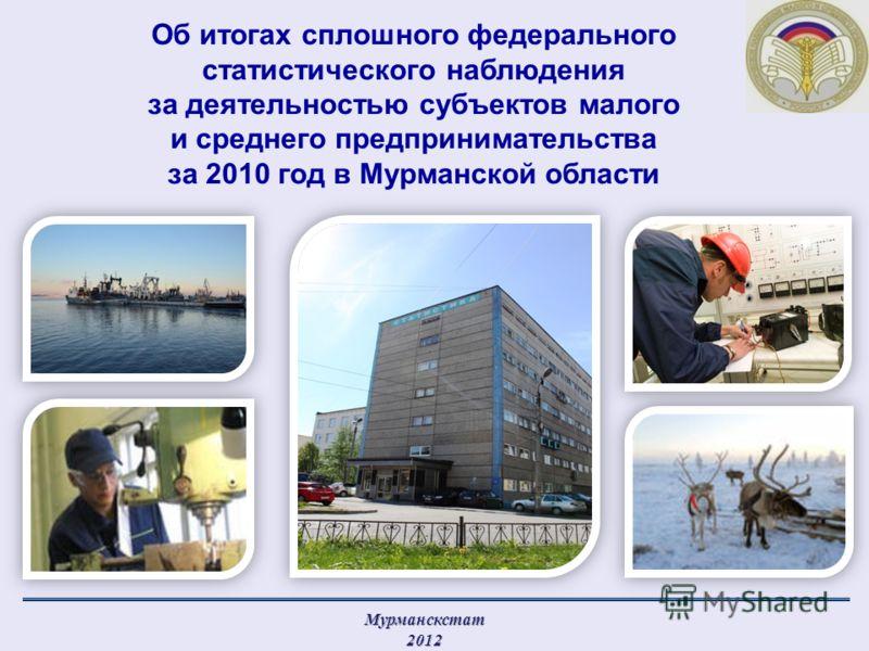 Об итогах сплошного федерального статистического наблюдения за деятельностью субъектов малого и среднего предпринимательства за 2010 год в Мурманской области
