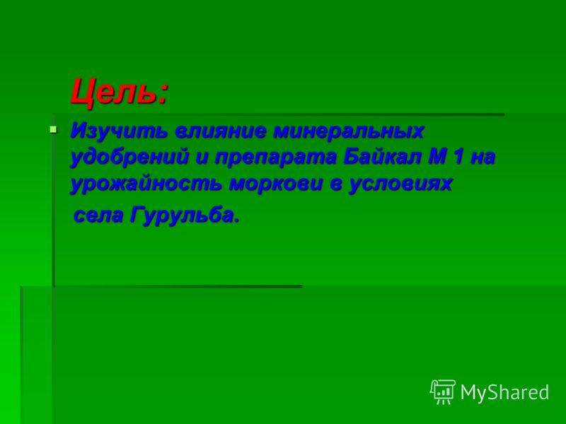 Цель: Цель: Изучить влияние минеральных удобрений и препарата Байкал М 1 на урожайность моркови в условиях Изучить влияние минеральных удобрений и препарата Байкал М 1 на урожайность моркови в условиях села Гурульба. села Гурульба.