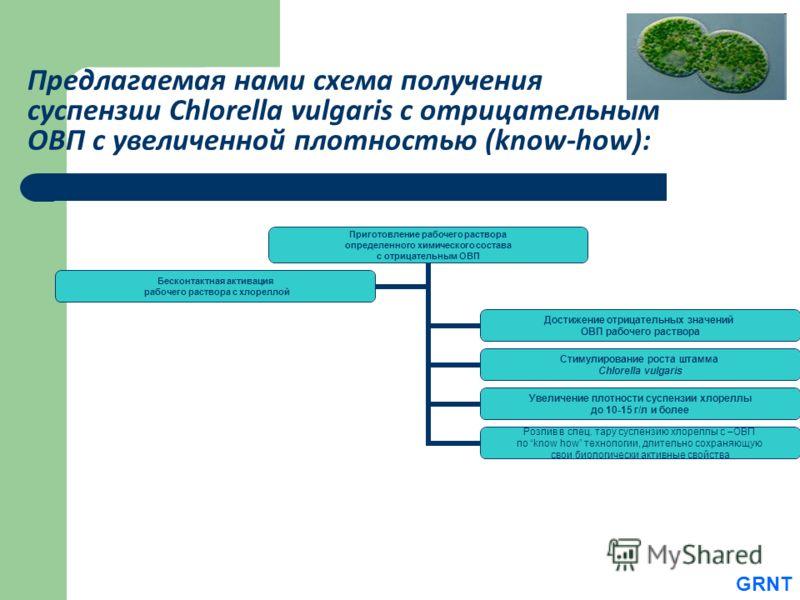 Предлагаемая нами схема получения суспензии Chlorella vulgaris с отрицательным ОВП с увеличенной плотностью (know-how): Приготовление рабочего раствора определенного химического состава с отрицательным ОВП Достижение отрицательных значений ОВП рабоче