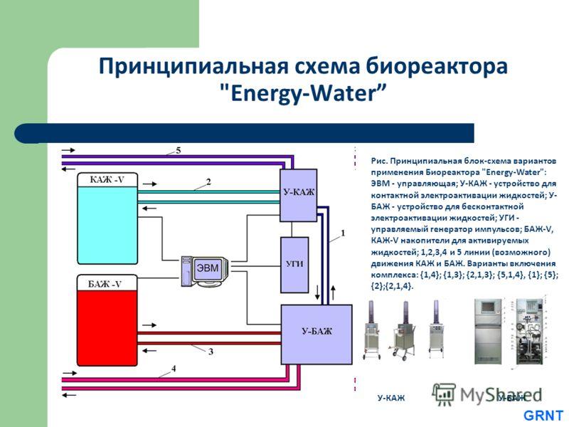 Принципиальная схема биореактора