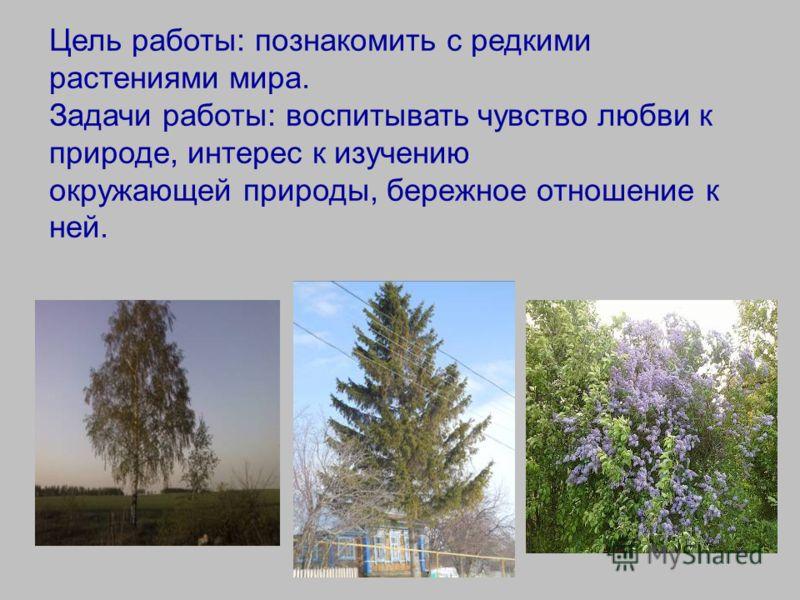 Цель работы: познакомить с редкими растениями мира. Задачи работы: воспитывать чувство любви к природе, интерес к изучению окружающей природы, бережное отношение к ней.