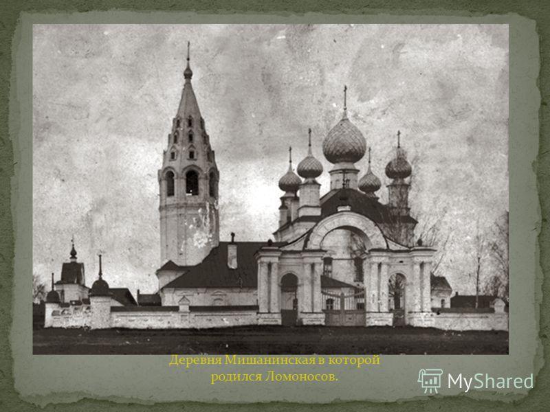 Деревня Мишанинская в которой родился Ломоносов.