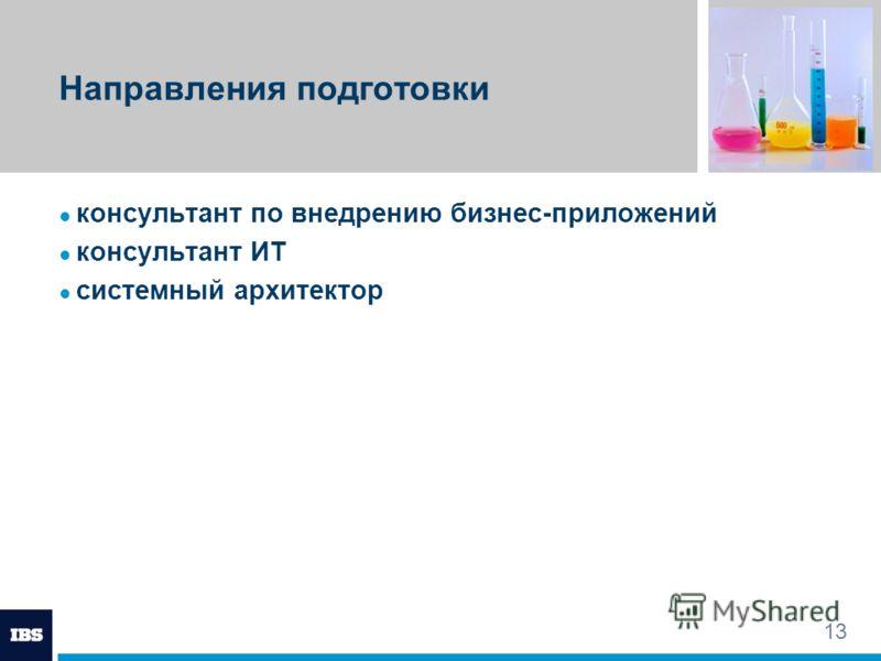 13 Направления подготовки консультант по внедрению бизнес-приложений консультант ИТ системный архитектор