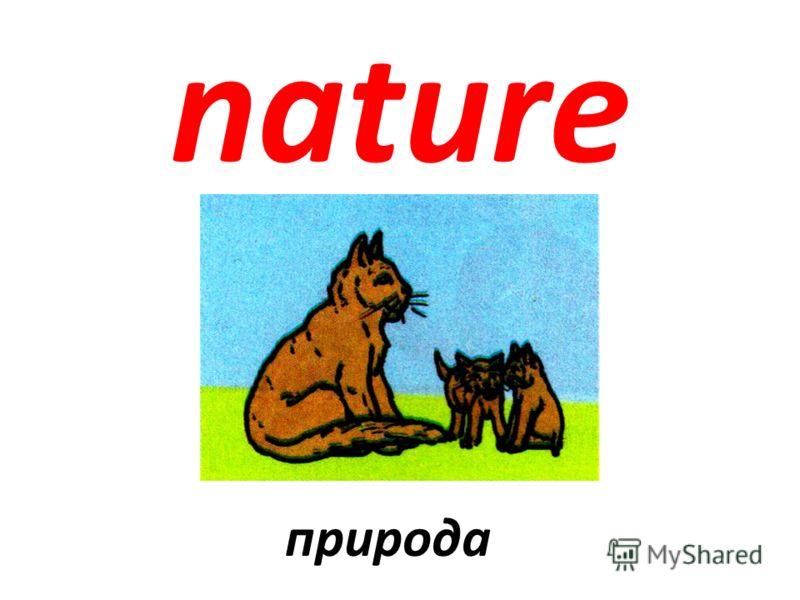 nature природа