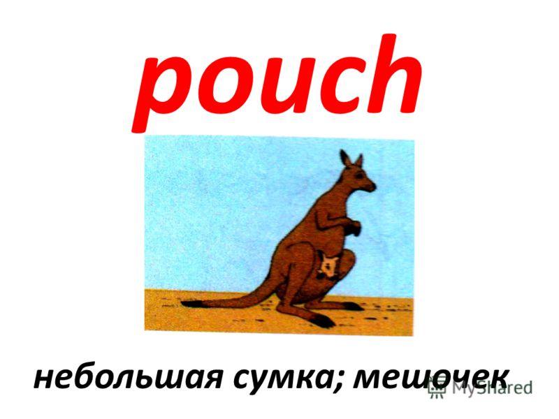 pouch небольшая сумка; мешочек