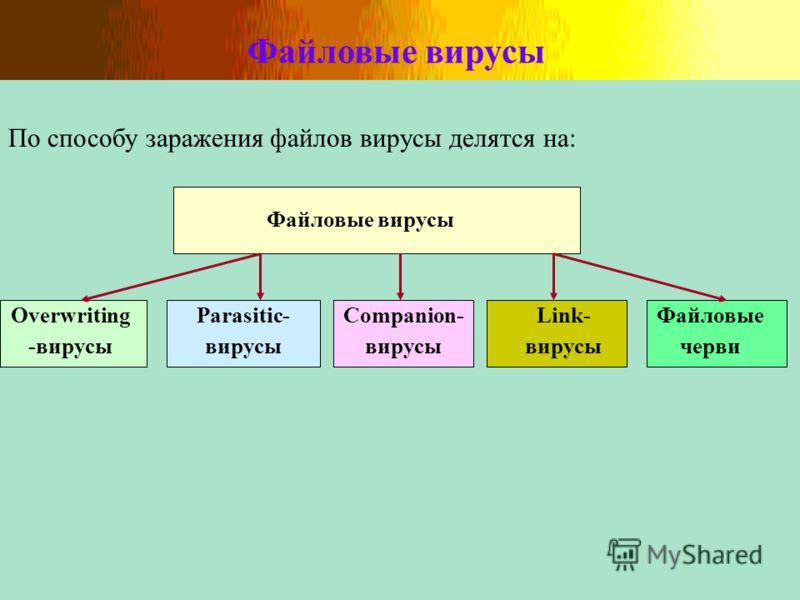 Файловые вирусы По способу заражения файлов вирусы делятся на: Файловые вирусы Overwriting -вирусы Parasitic- вирусы Companion- вирусы Link- вирусы Файловые черви