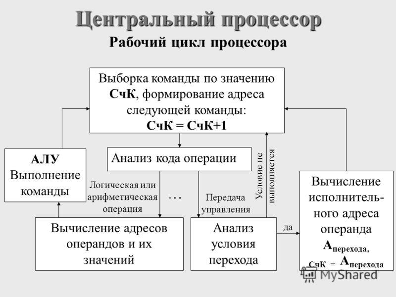 Центральный процессор Рабочий цикл процессора.… да Условие не выполняется Передача управления Логическая или арифметическая операция Выборка команды по значению СчК, формирование адреса следующей команды: СчК = СчК+1 Анализ кода операции Вычисление а