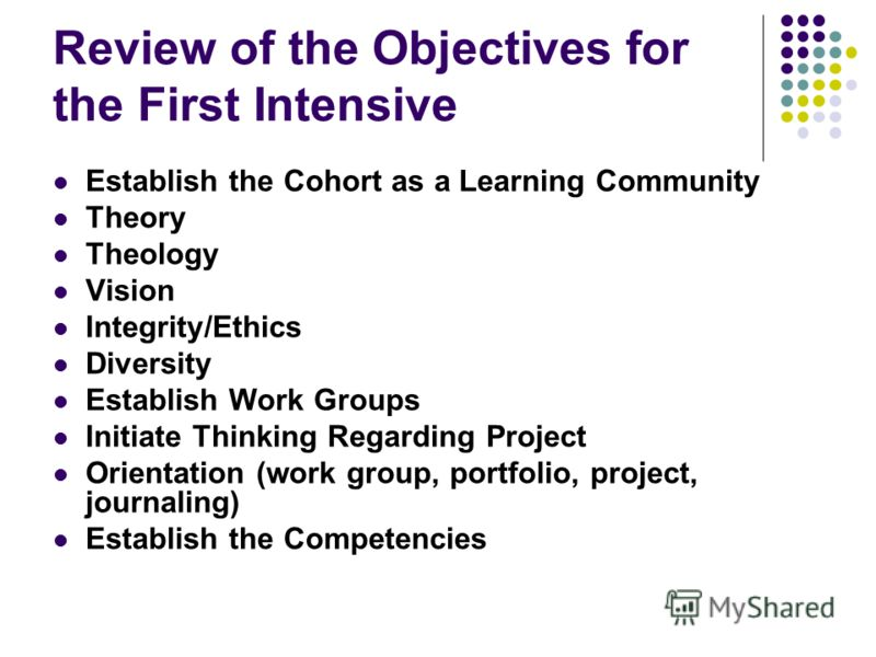 Review of the Objectives for the First Intensive Establish the Cohort as a Learning Community Theory Theology Vision Integrity/Ethics Diversity Establish Work Groups Initiate Thinking Regarding Project Orientation (work group, portfolio, project, jou
