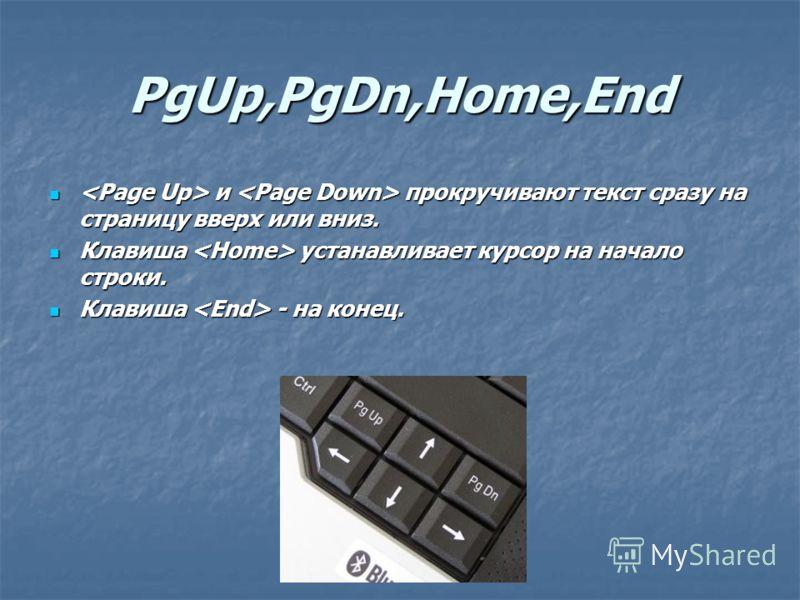 PgUp,PgDn,Home,End и прокручивают текст сразу на страницу вверх или вниз. и прокручивают текст сразу на страницу вверх или вниз. Клавиша устанавливает курсор на начало строки. Клавиша устанавливает курсор на начало строки. Клавиша - на конец. Клавиша