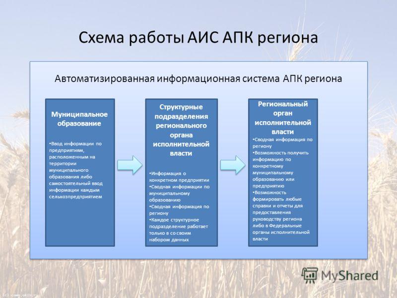 Схема работы АИС АПК региона Автоматизированная информационная система АПК региона Муниципальное образование Ввод информации по предприятиям, расположенным на территории муниципального образования либо самостоятельный ввод информации каждым сельхозпр