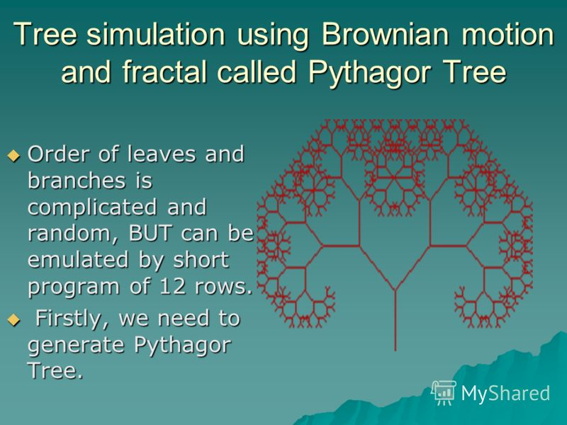 Tree simulation using Brownian motion and fractal called Pythagor Tree Order of leaves and branches is complicated and random, BUT can be emulated by short program of 12 rows. Order of leaves and branches is complicated and random, BUT can be emulate