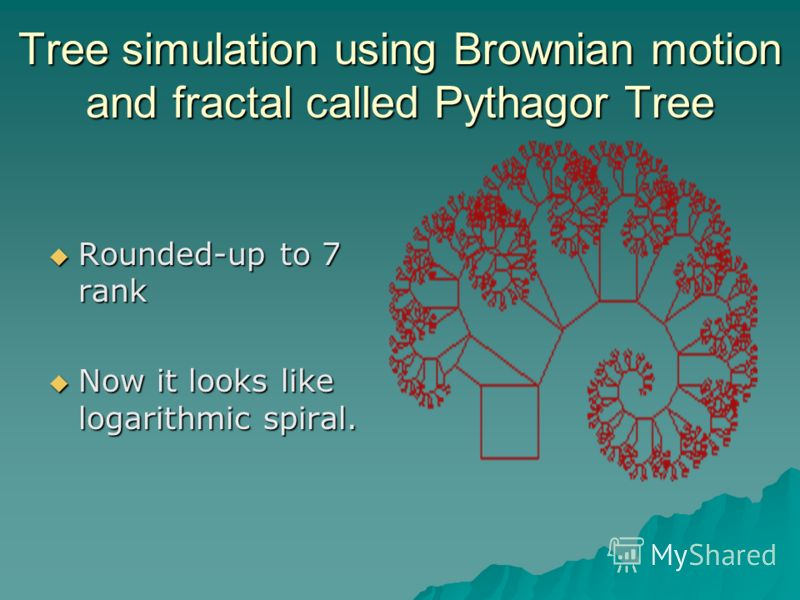 Tree simulation using Brownian motion and fractal called Pythagor Tree Rounded-up to 7 rank Rounded-up to 7 rank Now it looks like logarithmic spiral. Now it looks like logarithmic spiral.