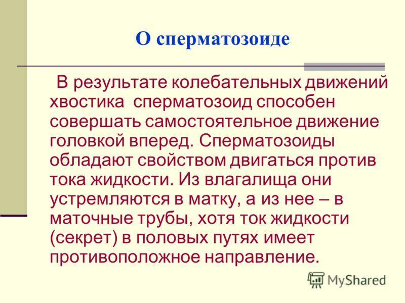 chto-napravlyaet-dvizhenie-spermatozoida