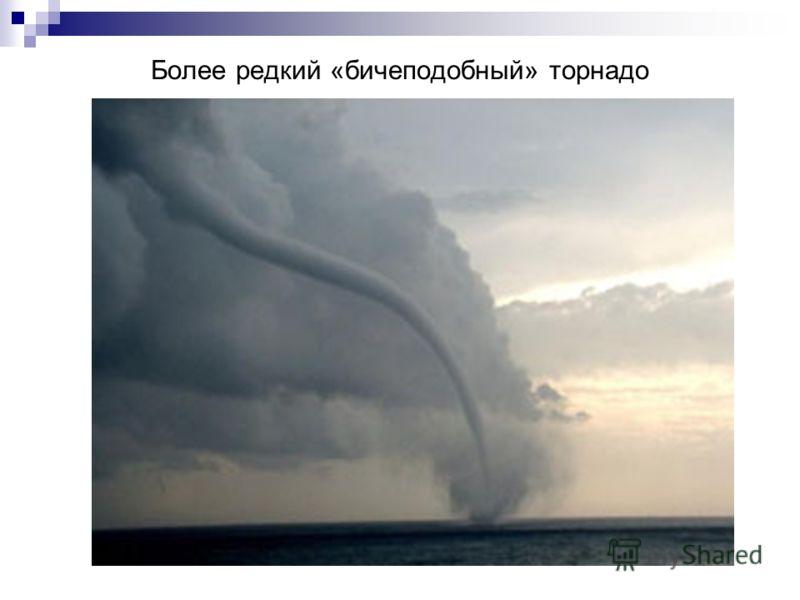Более редкий «бичеподобный» торнадо