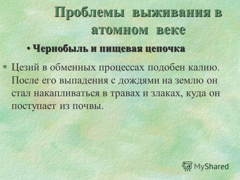 Проблемы выживания в атомном веке Чернобыль и пищевая цепочкаЧернобыль и пищевая цепочка §Цезий в обменных процессах подобен калию. После его выпадения с дождями на землю он стал накапливаться в травах и злаках, куда он поступает из почвы.