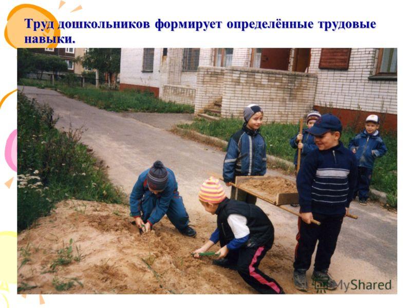 Труд дошкольников формирует определённые трудовые навыки.