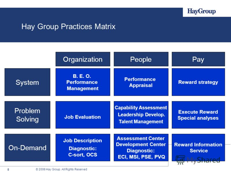 © 2006 Hay Group. All Rights Reserved 8 System Problem Solving On-Demand OrganizationPeoplePay B. E. O. Performance Management Job Description Diagnostic: C-sort, OCS Performance Appraisal Capability Assessment Leadership Develop. Talent Management A