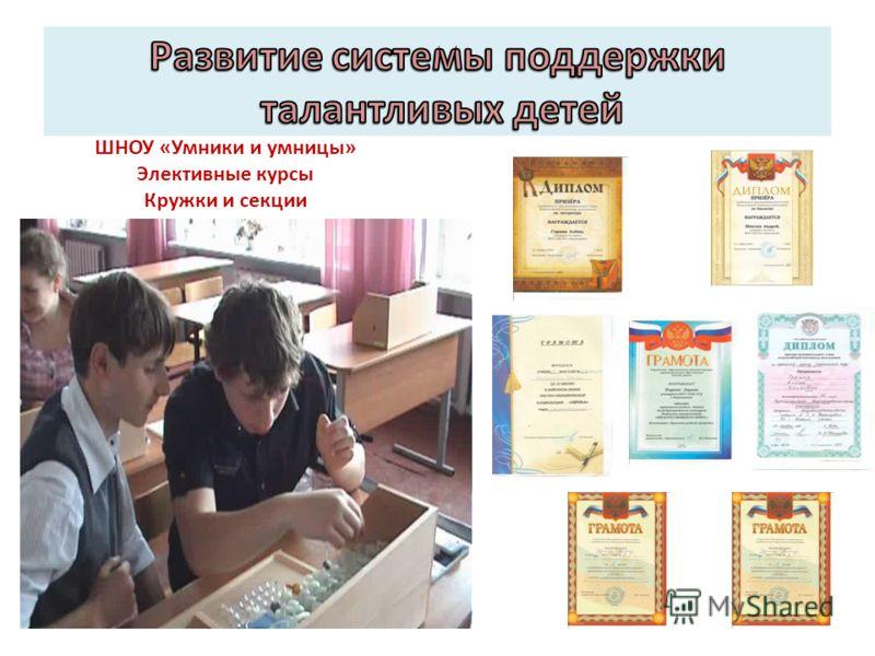 ШНОУ «Умники и умницы» Элективные курсы Кружки и секции