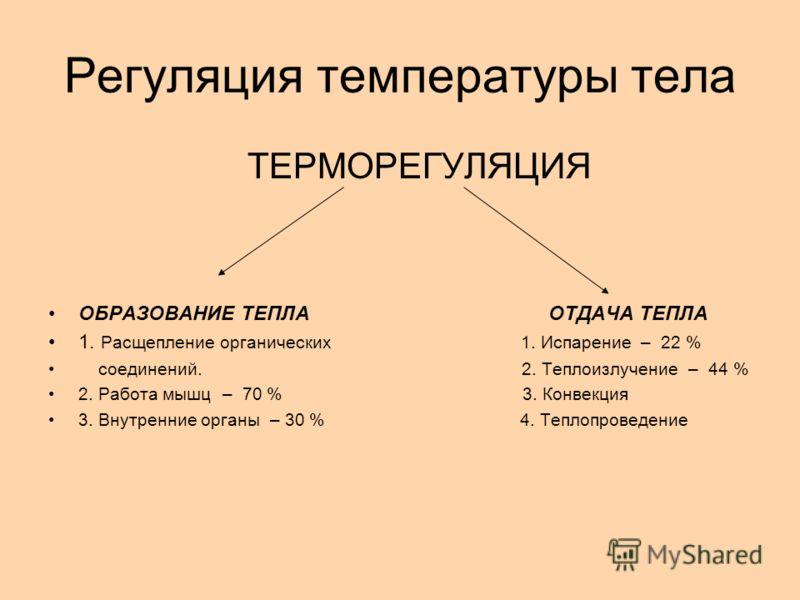 Регуляция температуры тела ТЕРМОРЕГУЛЯЦИЯ ОБРАЗОВАНИЕ ТЕПЛА ОТДАЧА ТЕПЛА 1. Расщепление органических 1. Испарение – 22 % соединений. 2. Теплоизлучение – 44 % 2. Работа мышц – 70 % 3. Конвекция 3. Внутренние органы – 30 % 4. Теплопроведение
