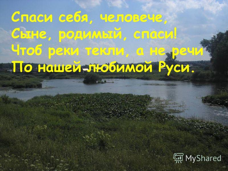 Спаси себя, человече, Сыне, родимый, спаси! Чтоб реки текли, а не речи По нашей любимой Руси. 53