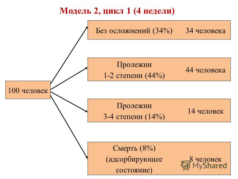 Без осложнений (34%)34 человека Пролежни 1-2 степени (44%) 44 человека 100 человек Пролежни 3-4 степени (14%) 14 человек Смерть (8%) (адсорбирующее состояние) 8 человек Модель 2, цикл 1 (4 недели)