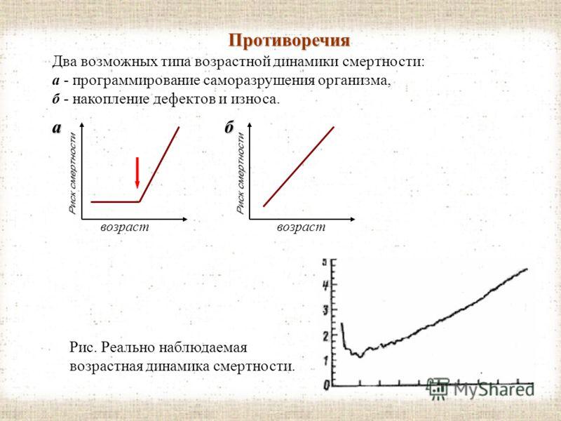 Свободно радикальная теория Парадоксально, но факт: главный враг клеток - это О 2. Точнее, активные формы молекулы кислорода - свободные радикалы (О 2 - ), разрушающие клетку изнутри. 1. защищают организм антиоксиданты - обезвреживают действие СР. св