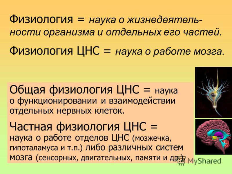 3 Физиология = наука о жизнедеятель- ности организма и отдельных его частей. Физиология ЦНС = наука о работе мозга. Общая физиология ЦНС = наука о функционировании и взаимодействии отдельных нервных клеток. Частная физиология ЦНС = наука о работе отд