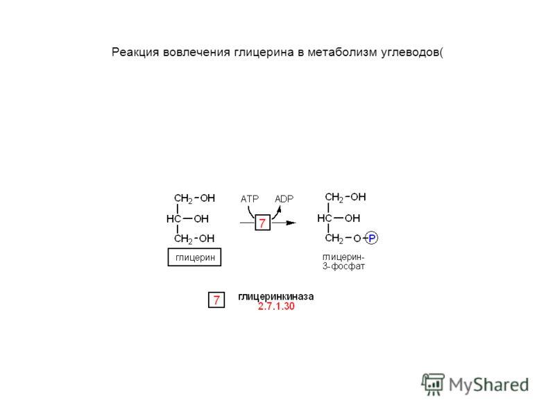 Реакция вовлечения глицерина в метаболизм углеводов(