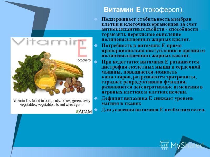 Витамин Е (токоферол). Поддерживает стабильность мембран клетки и клеточных органоидов за счет антиоксидантных свойств - способности тормозить перекисное окисление полиненасыщенных жирных кислот. Потребность в витамине Е прямо пропорциональна поступл