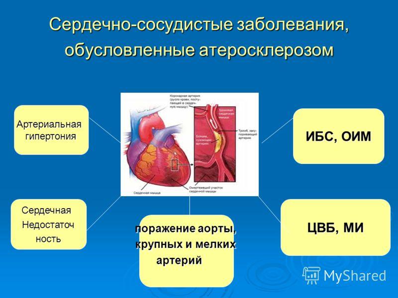 Сердечно-сосудистые заболевания, обусловленные атеросклерозом Артериальнаягипертония СердечнаяНедостаточность поражение аорты, крупных и мелких артерий ЦВБ, МИ ИБС, ОИМ